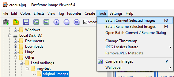 batch convert selected images in faststone image viewer