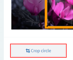 Crop circle button on ImageOnline.co