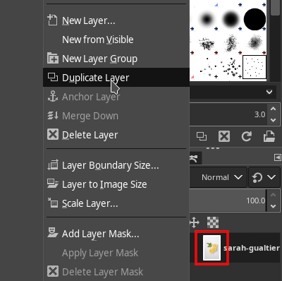 GIMP Duplicate Layer