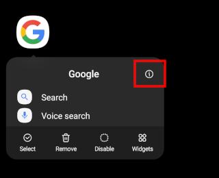 Google app info