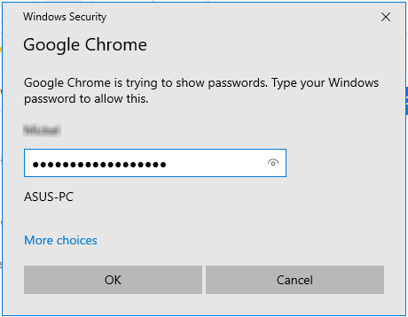Google Chrome authentication window