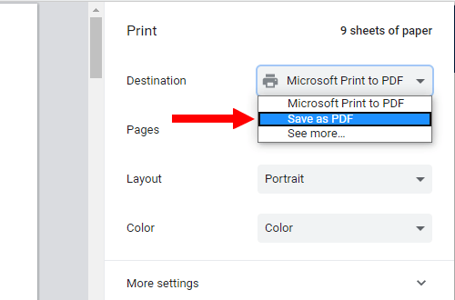 Google Chrome print preview window