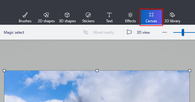 Paint 3D Canvas options