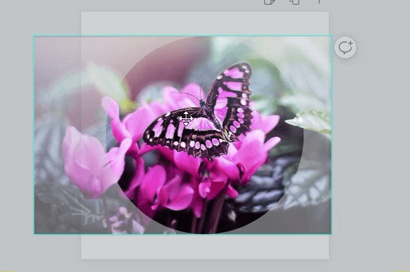 Reposition a picture on Canva