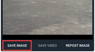 Save image button