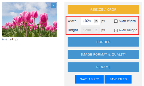 How to resize multiple images at once online (5 easy ways)
