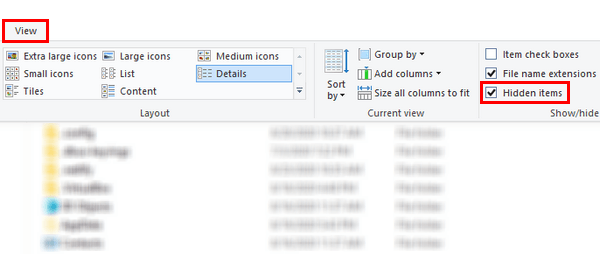 Show hidden items in Windows 10 File Explorer